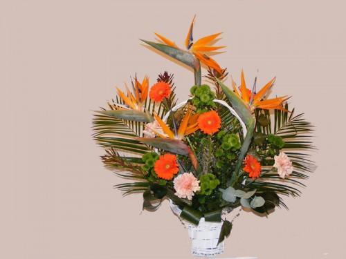 Cos de flori C12